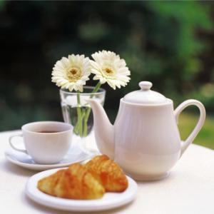 """Кафе """"Зимний сад"""""""